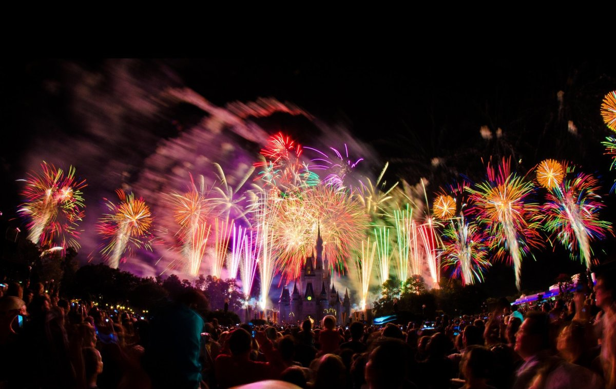 A packed house looks on during Walt Disney World's 40th anniversary fireworks on October 1, 2011.
