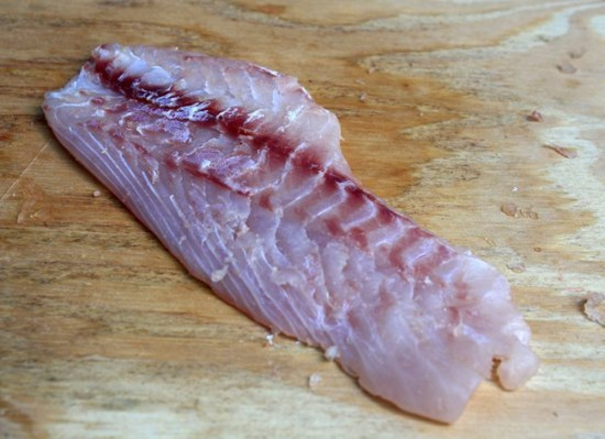 When preparing fish for ceviche, before you even start to cut it up, you need to remove the bloodline. If left on the fish, t