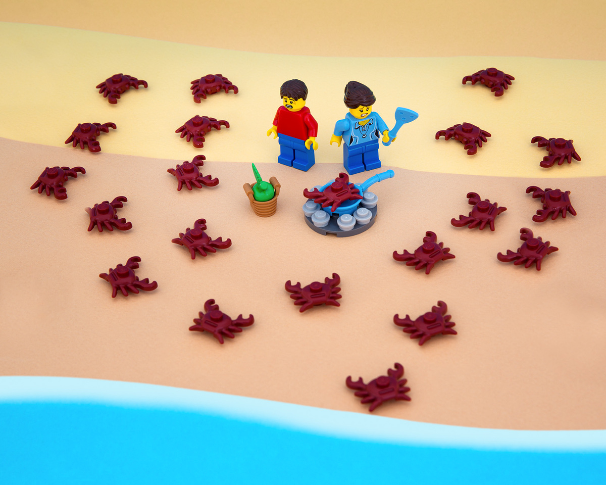 """Today the crabs decided to have a picnic of their own."""