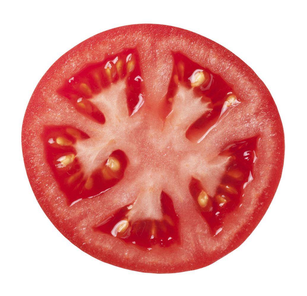 "The scientific name for tomatoes is <em>Lycopersicon lycopersicum</em>, which means <a href=""http://www.hgtvgardens.com/tomat"