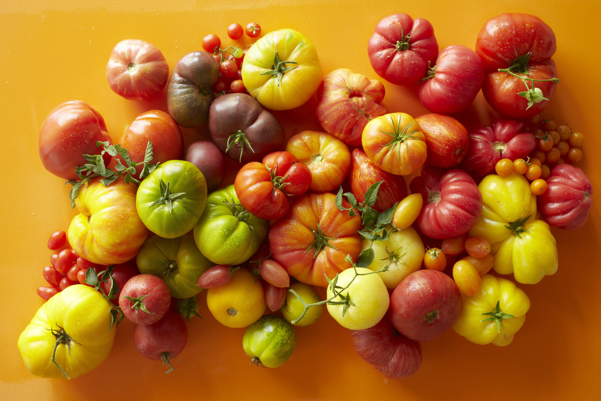 "That's a lot of <a href=""http://www.ngkids.co.uk/did-you-know/Ten-Top-Tomato-Facts"" target=""_blank"">different kinds of tomato"