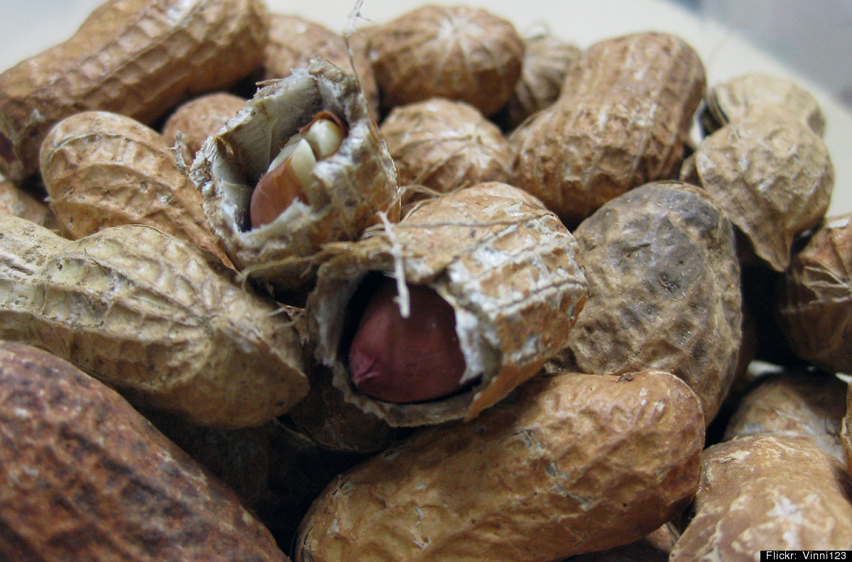 """Almonds, walnuts, pecans, pistachios and other nuts are <a href=""""http://www.rodale.com/vegetarian-protein-sources?page=2"""" tar"""