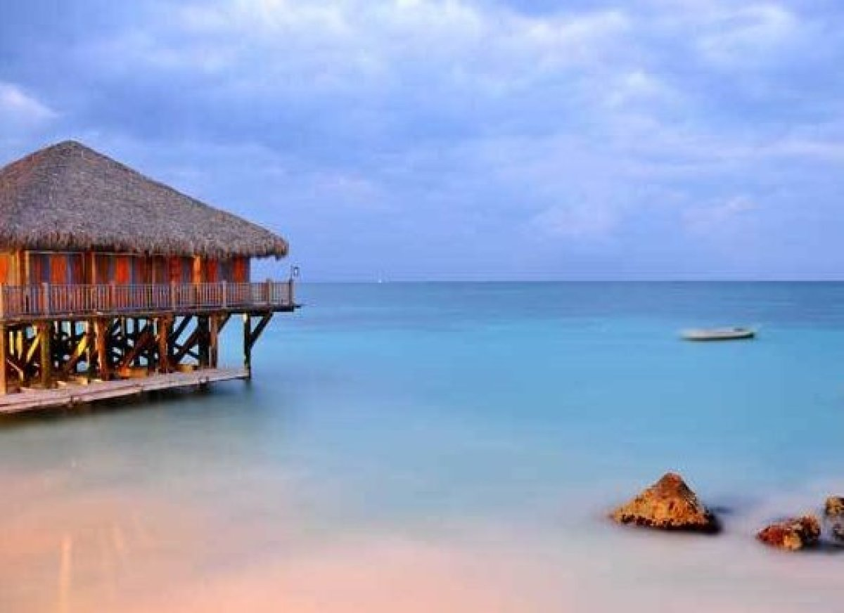 <em>Photo Credit: Binu Mathew/Shutterstock</em>
