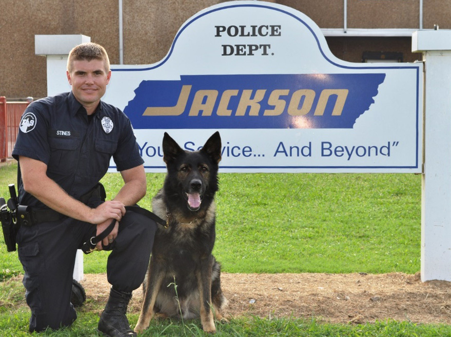 This undated photo provided by the Jackson, Tenn. Police Department on Wednesday, July 23, 2014 shows Farro, a police dog, an