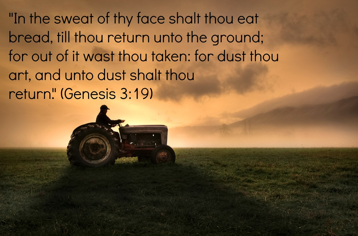 Religious Quotes Religious Quotes For Labor Day Scriptural Passages That Highlight