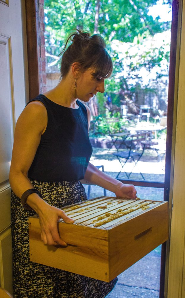 """Jessica Chrustic prepares for a hive inspection by carrying out a new wooden <a href=""""http://beekeeping.wikia.com/wiki/Honey_"""
