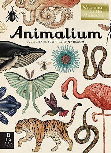 This book is an extraordinary collection of information about the vast variety of Earth's animals, from the smallest insect t