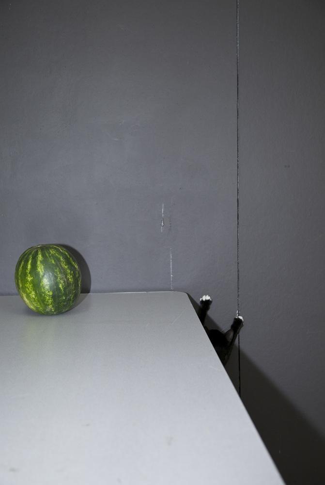 "<a href=""http://sandrastark.viewbook.com/"" target=""_blank"">Sandra Stark</a>, ""Rayburn and the Watermelon,"" 2014"