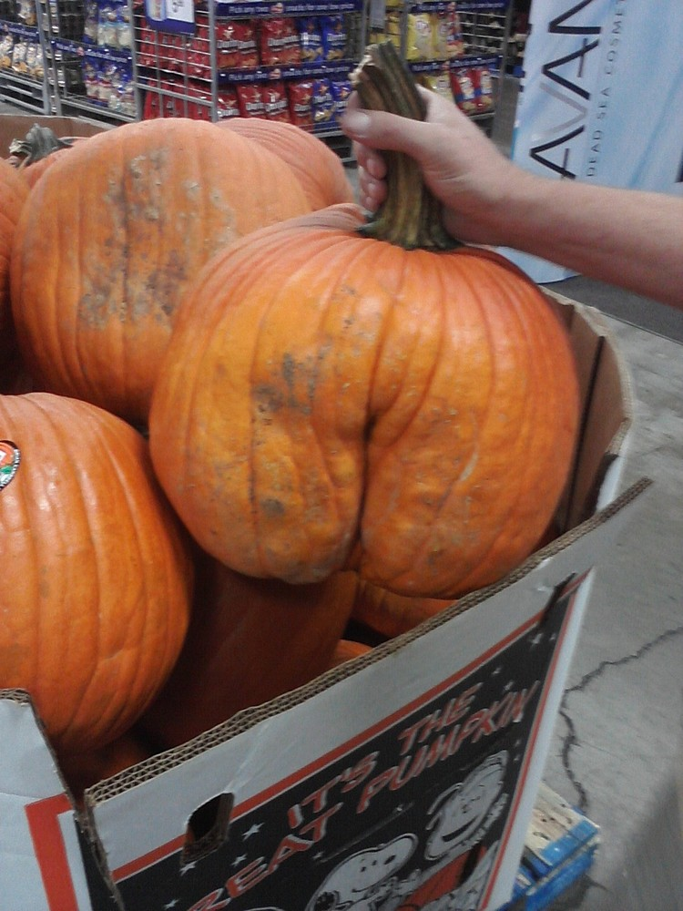 You don't even have to carve this one to be inappropriate.