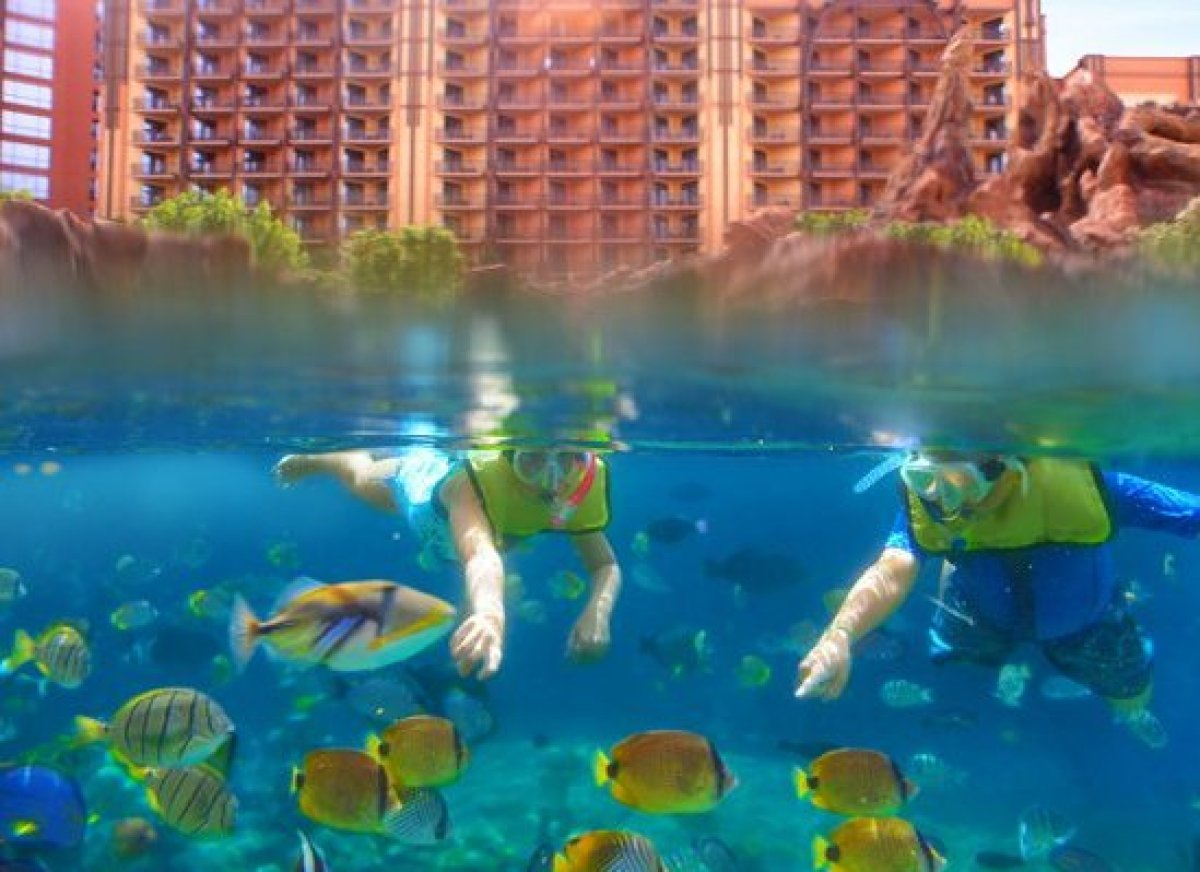<em>Photo Credit: Courtesy of Aulani, a Disney Resort & Spa</em>