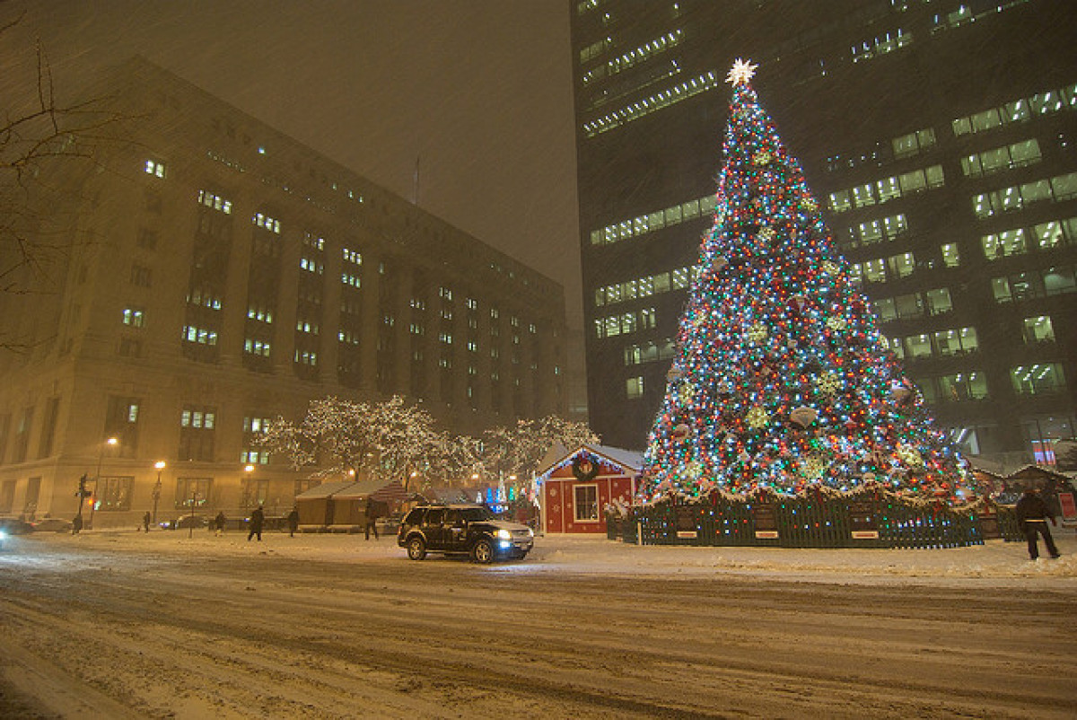 top 10 iconic christmas trees and their roots huffpost - Christmas Trees Chicago