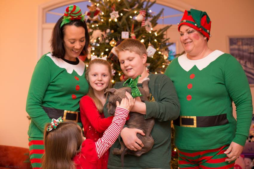"Elves from the <a href=""https://www.facebook.com/FairfaxCountyAnimalShelter?ref=br_tf"">Fairfax County Animal Shelter</a> deli"