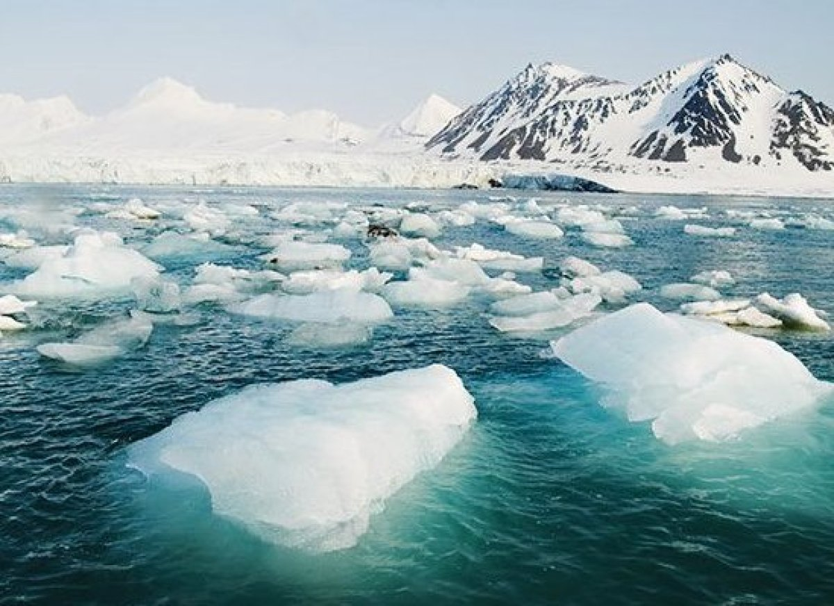 <em>Photo Credit: Incredible Arctic / Shutterstock</em>