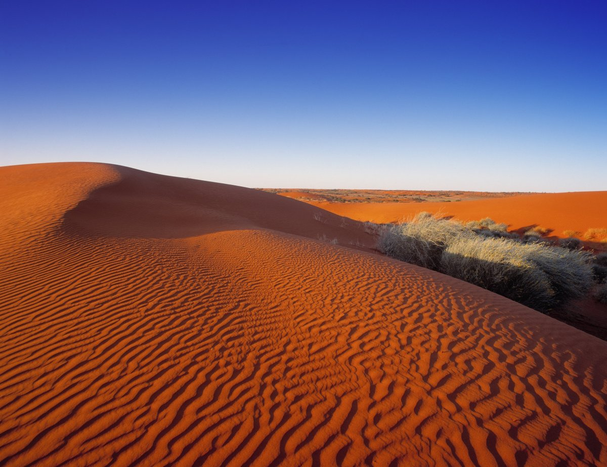 Welcome to the world's largest sand dune desert. It's a desert that branches out into South Australia and Queensland as well
