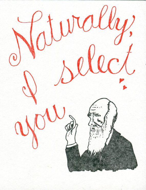 Nerdy ValentineS Day Cards For Adorkable Couples  Huffpost