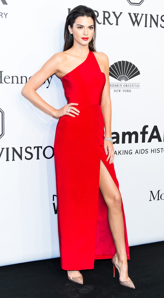 Kendall Jenner's modeling career seems to be paying off -- look at how she is giving it to the camera. It would be easy for a