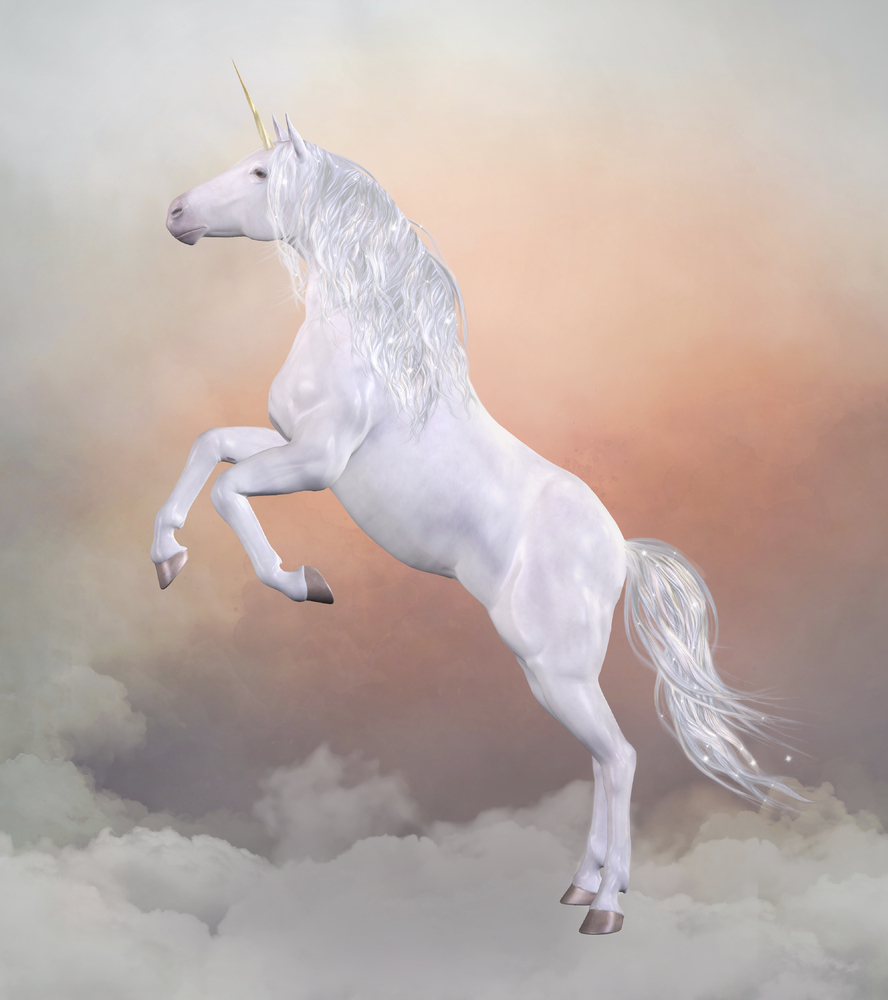13 stock images of unicorns that will blind you with majesty