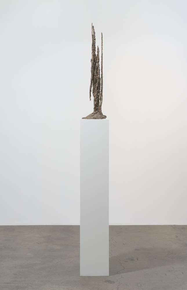 "Kelly Akashi Harvest 2015 Bronze, MDF, white paint 12.5 x 11 x 97.5"""