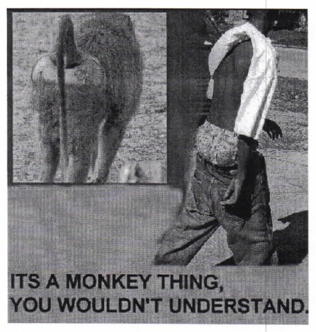 An e-mail compared an African American to a monkey.