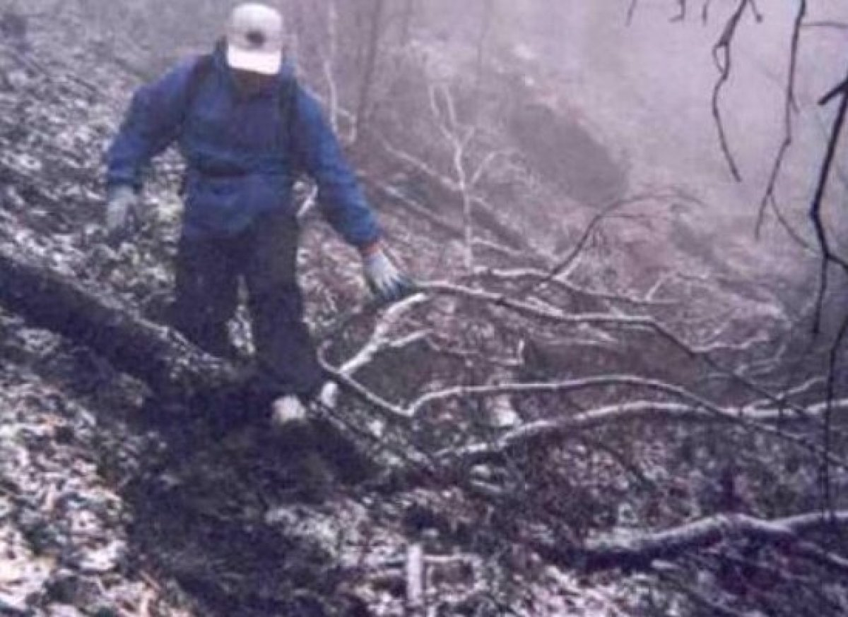 This no-frills Tennessee backwoods torture course was inspired by the story of an assassin's escape from prison and begins wi