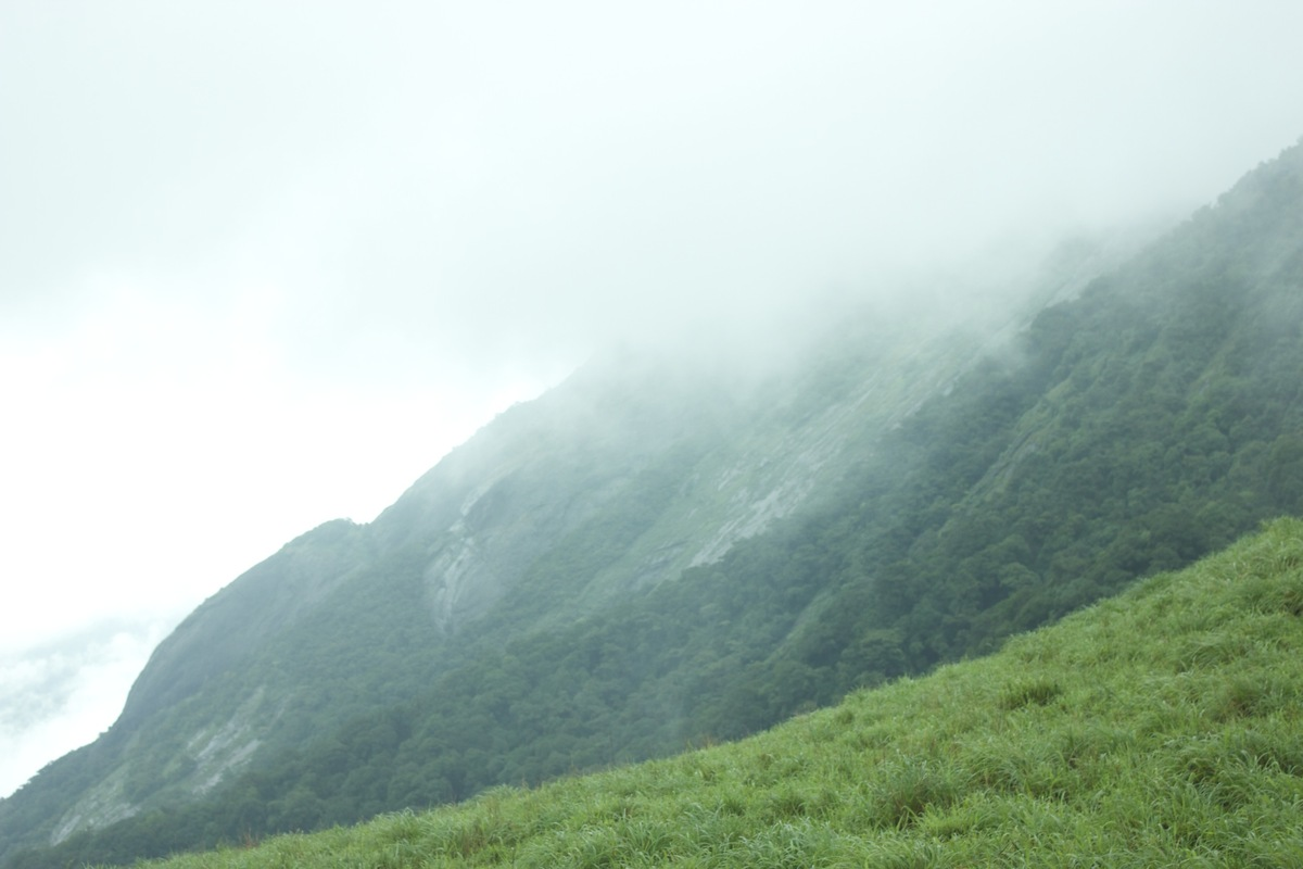 The second highest peak (at 1712 metres) in Kodagu, Kumara Parvatha is a popular peak to climb. However, the 15-kilometre tre