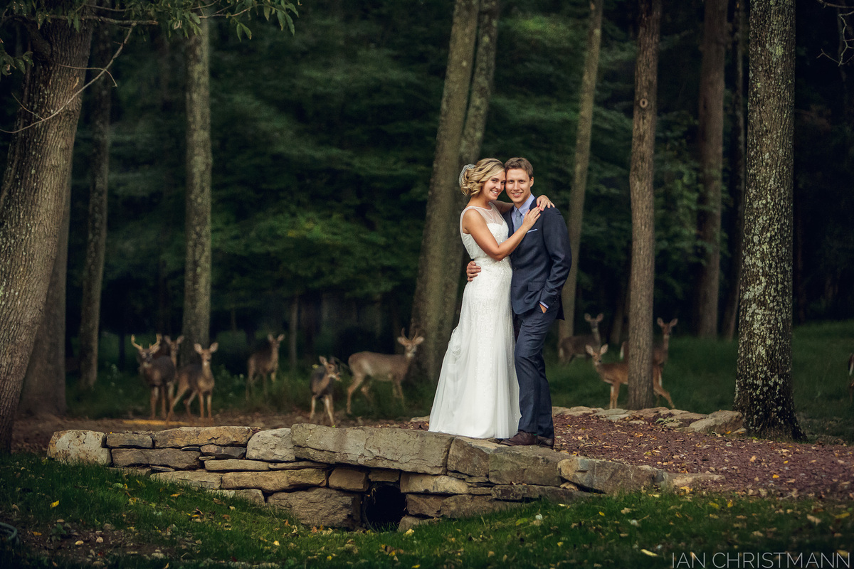 """Photographed in the <a href=""""http://catalystphotography.com/blog/deerly-beloved/"""" target=""""_blank"""">couple's backyard</a> in St"""