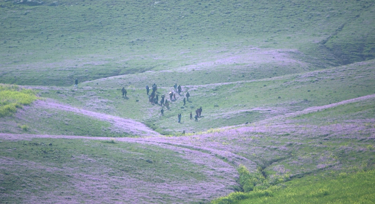 The group of kidnapped people escaping across the frontline from ISIS-controlled territory near the Sinjar mountain
