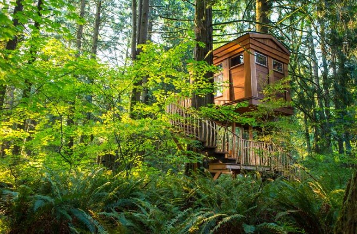 10 incredible tree house hotels in the us huffpost treehouse point sisterspd