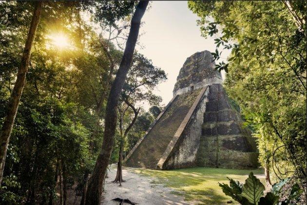 Las ruinas más significativas de los Mayas en Guatemala. La otrora bulliciosa metrópoli ahora emite un ambiente de selva enca