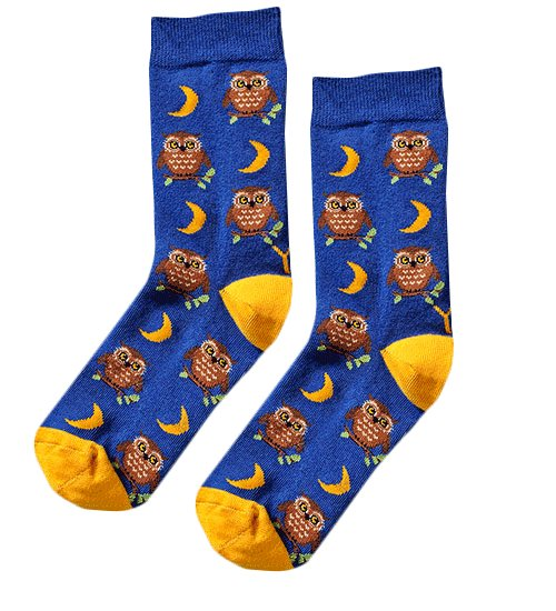 "<a href=""https://www.yo-sox.ca/collections/womens-socks/products/night-owl-socks"" target=""_blank"">Night Owl Socks, $10.95, av"
