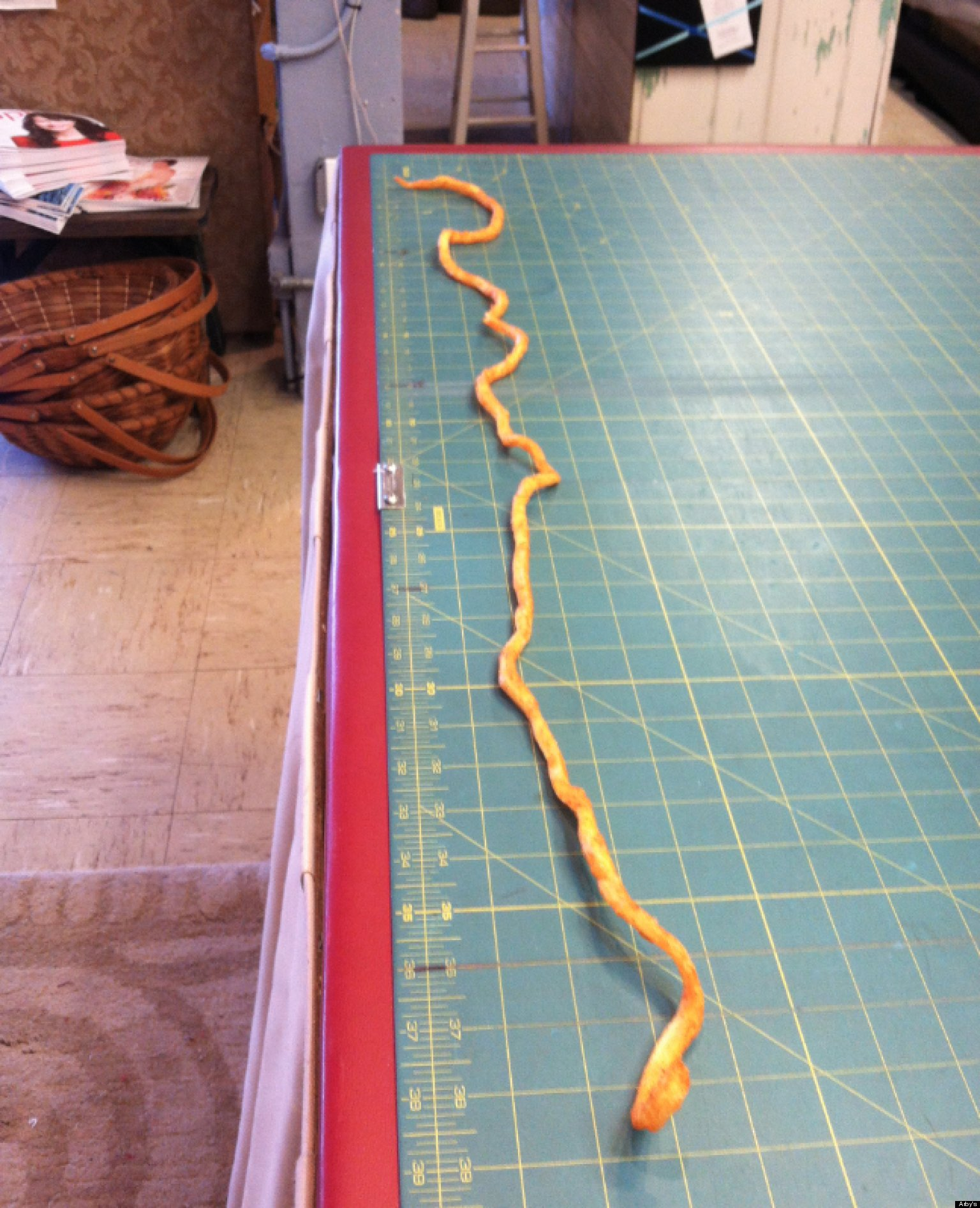 world s longest curly fry arby s customer kim medford discovers 38