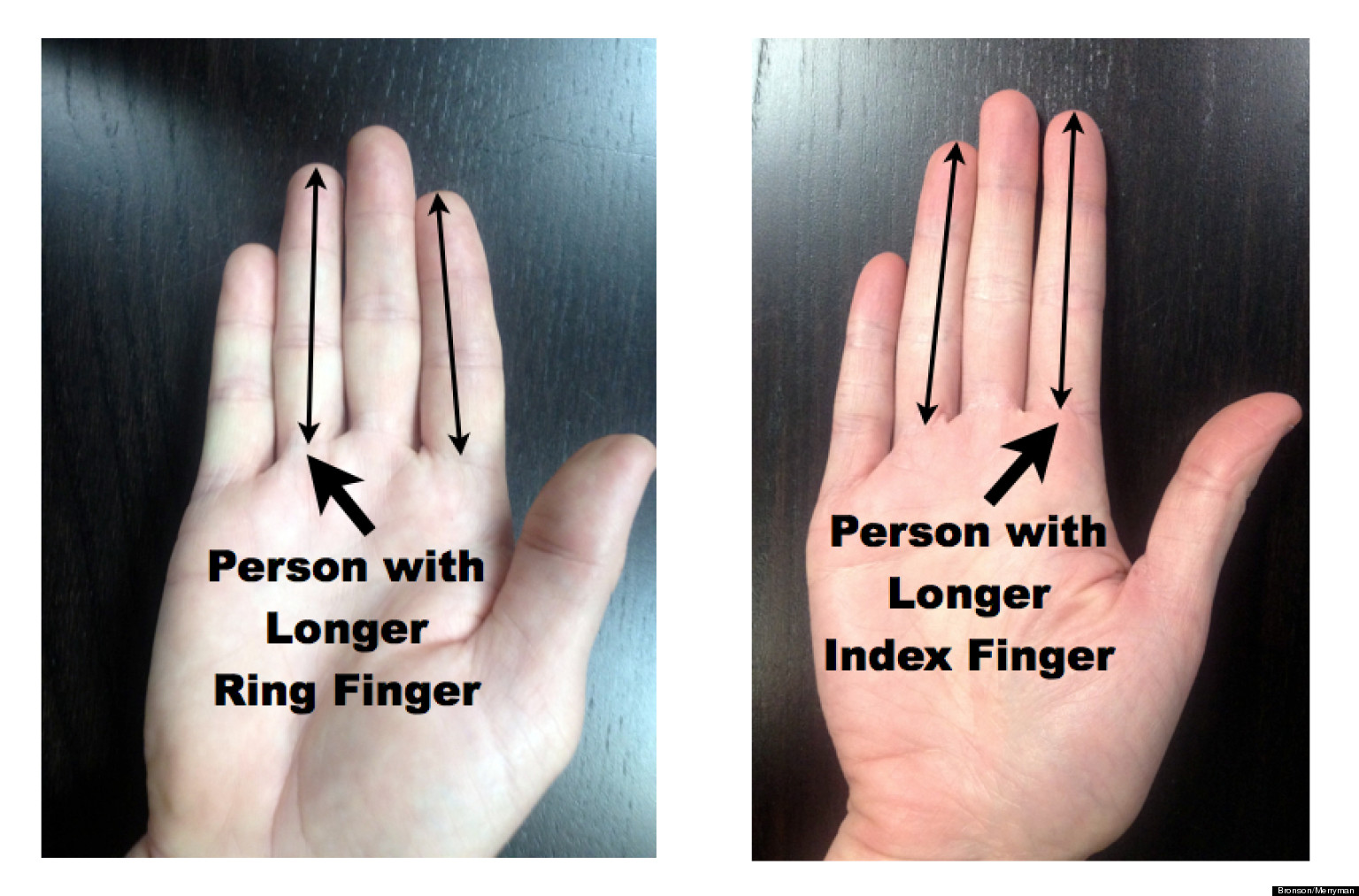 Ring finger middle finger length sexual orientation
