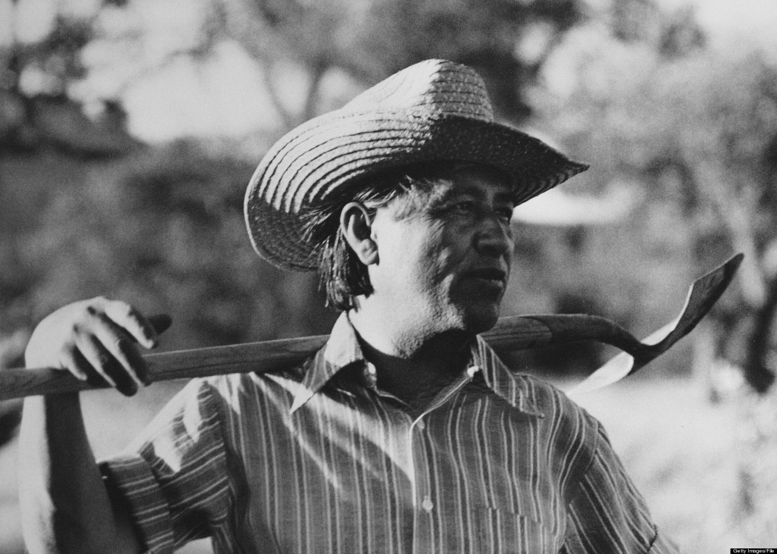 cesar chavez used terms wetbacks illegals to describe cesar chavez used terms wetbacks illegals to describe immigrants huffpost