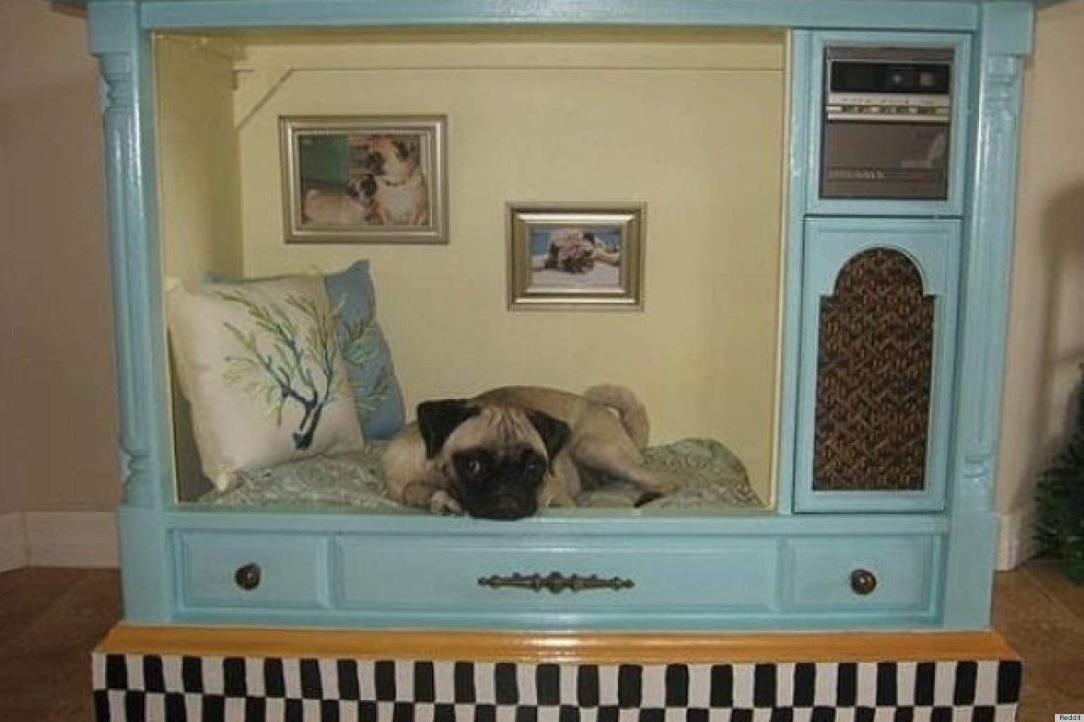 A Tv Set Turned Dog House Proves That Anything Can Be