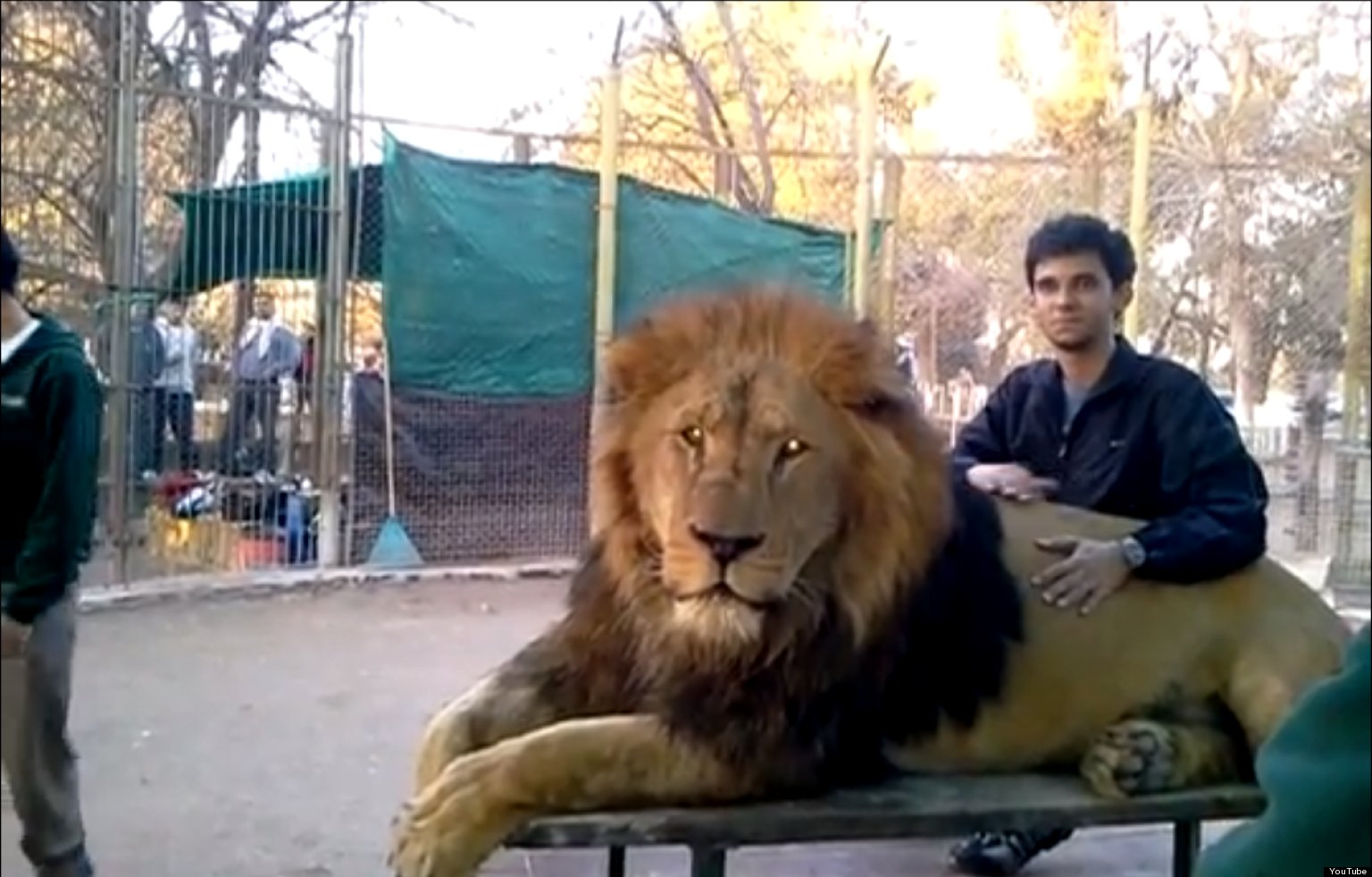 Argentina S Lujan Zoo Stirs Controversy As Visitors Pet