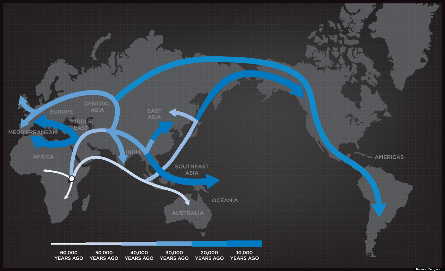 Human evolution migration national geographics genographic human evolution migration national geographics genographic project tells our story video huffpost gumiabroncs Choice Image