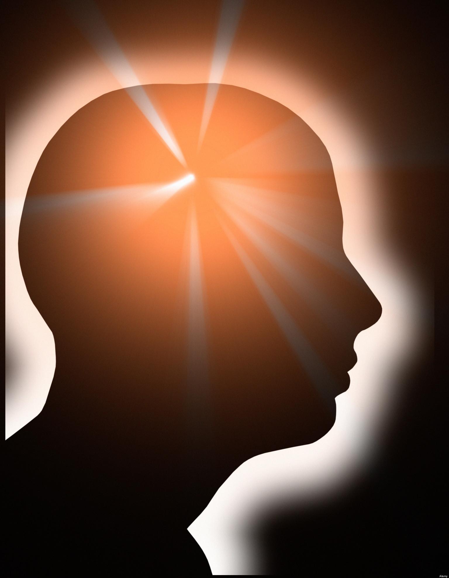 www du porno video com neurobiologist
