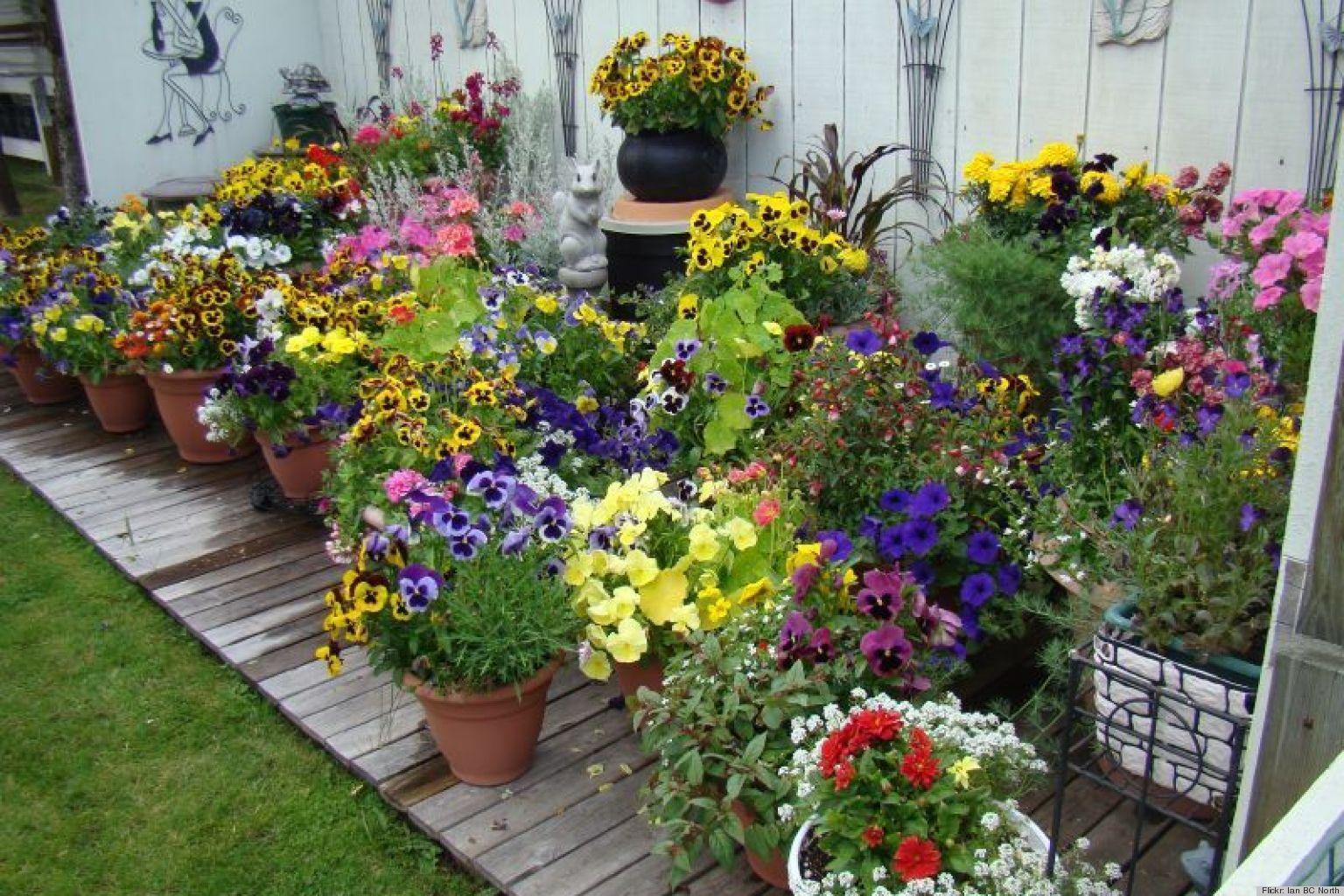 10 Pretty Container Gardens That Are Perfect For Any Home (PHOTOS ...