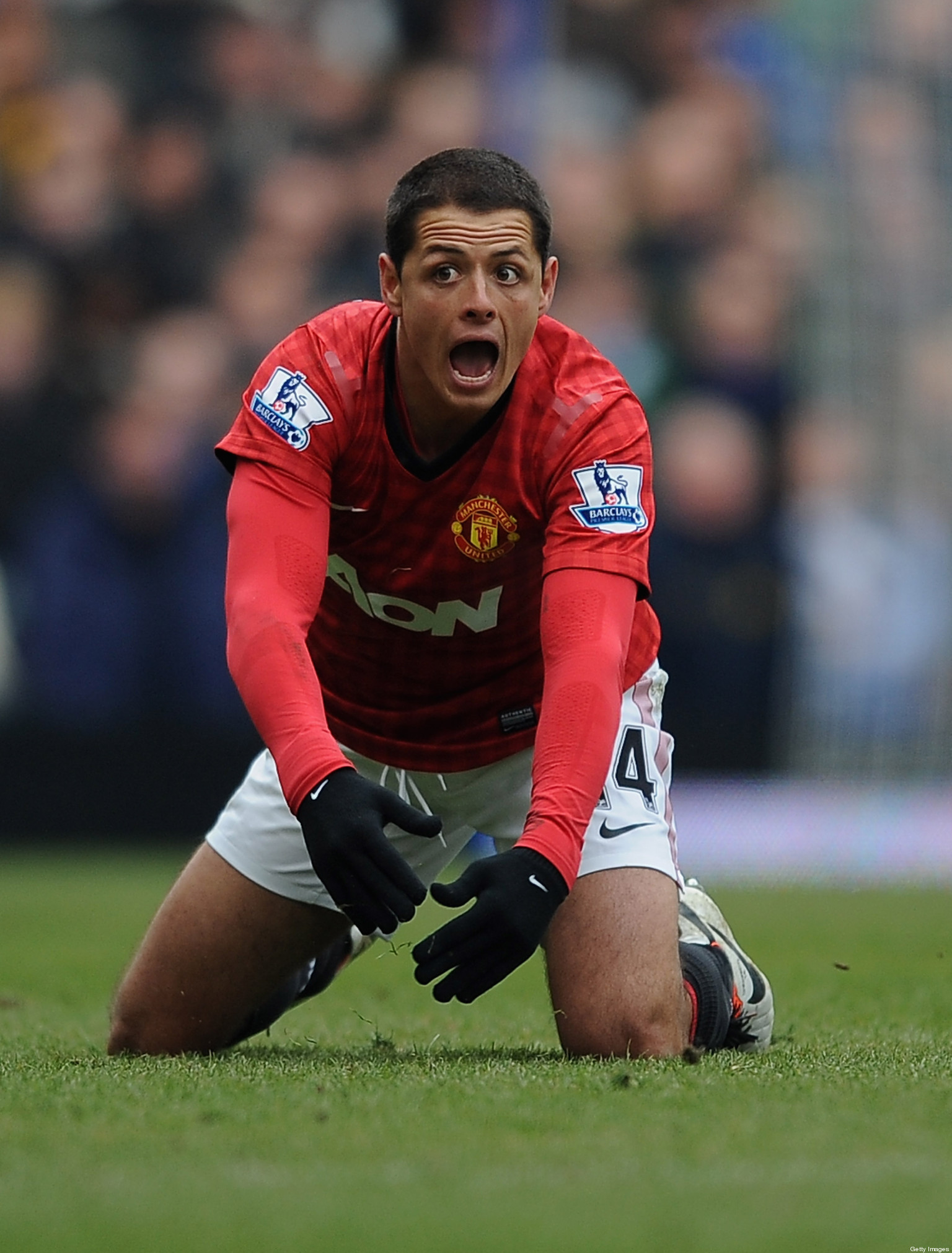 Chicharito is back but louis van gaal was still right to sell him huffpost uk