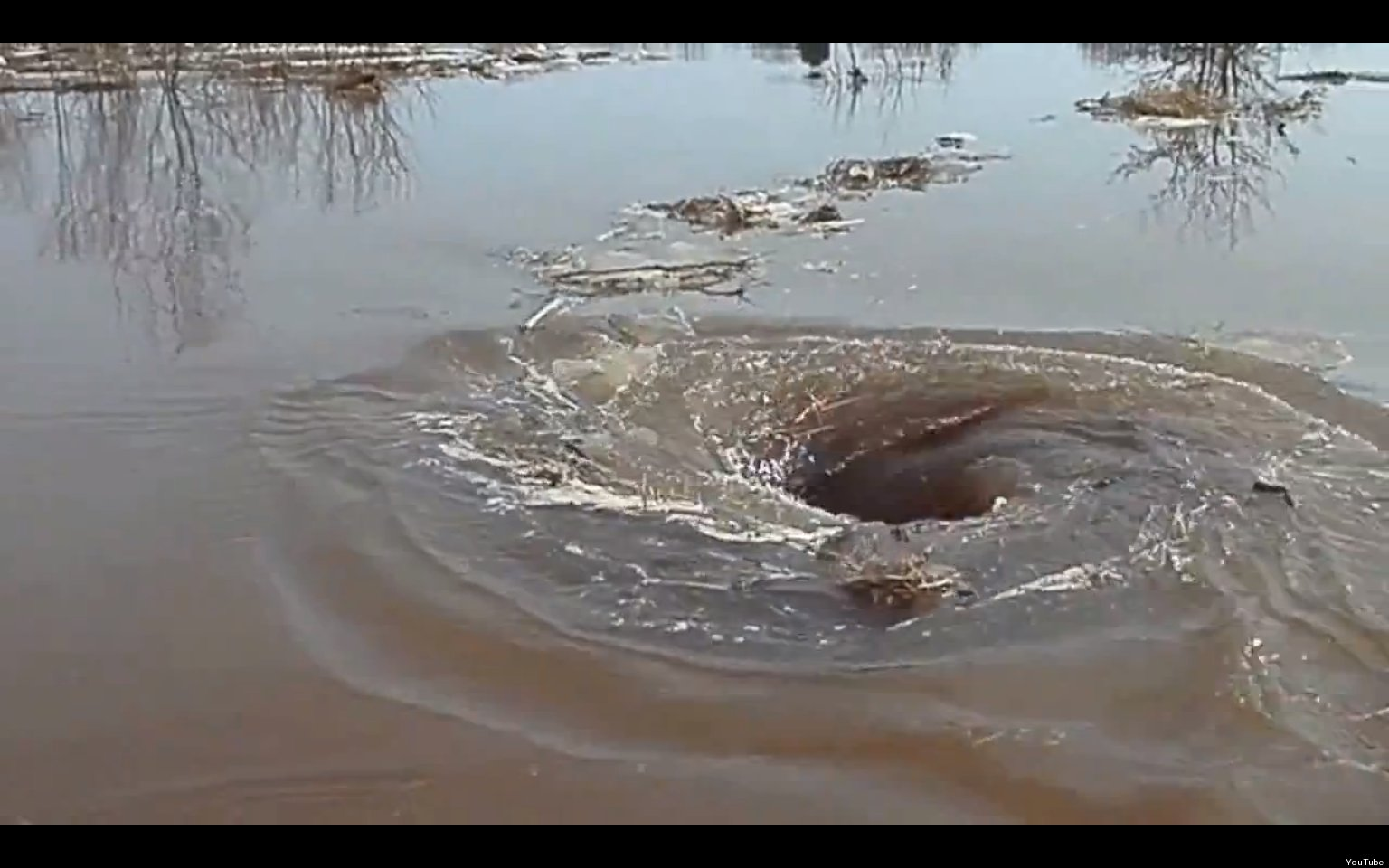 Whirlpool Video: Vortex In Latvian River Devours All That