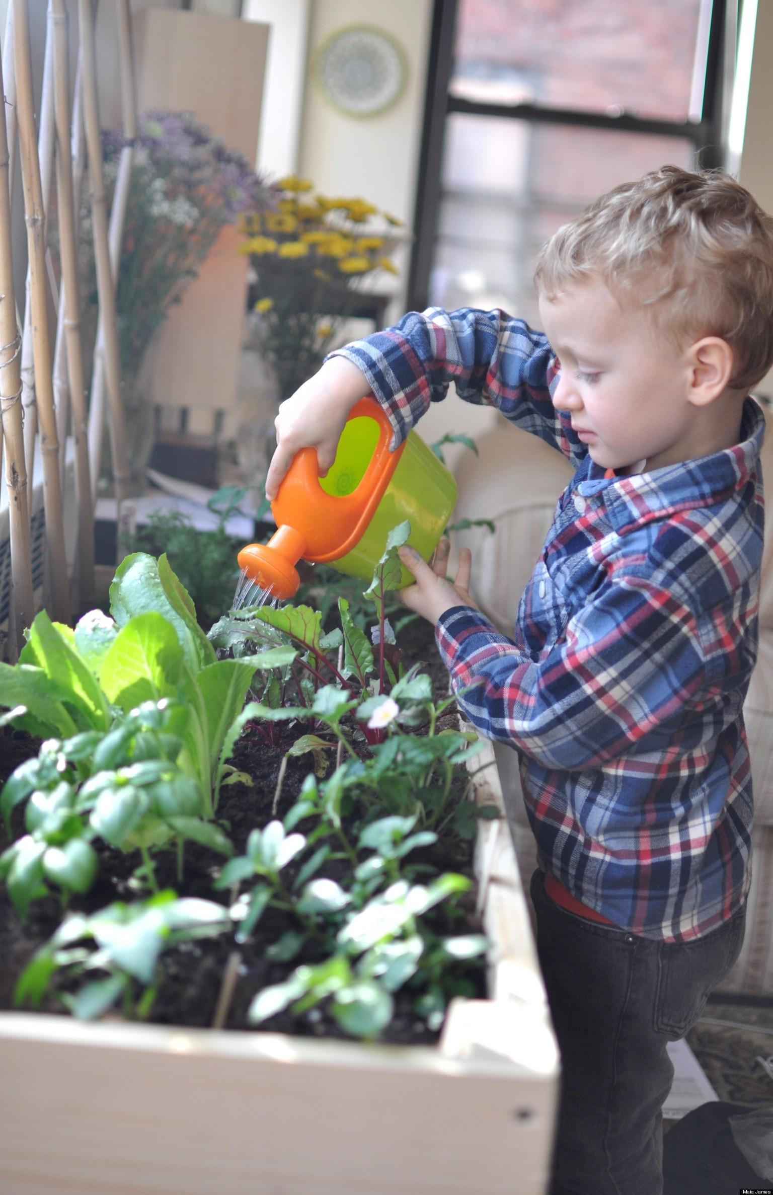 Indoor Garden for City Kids | HuffPost on