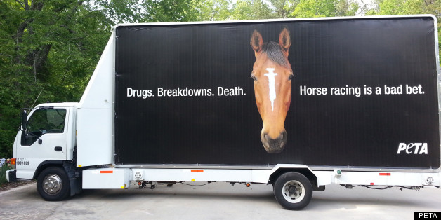 Peta Kentucky Derby Billboard Protests Horse Racing Drug Use Draws Attention At Churchill Downs