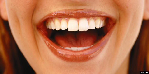 What happens in your brain when you laugh?