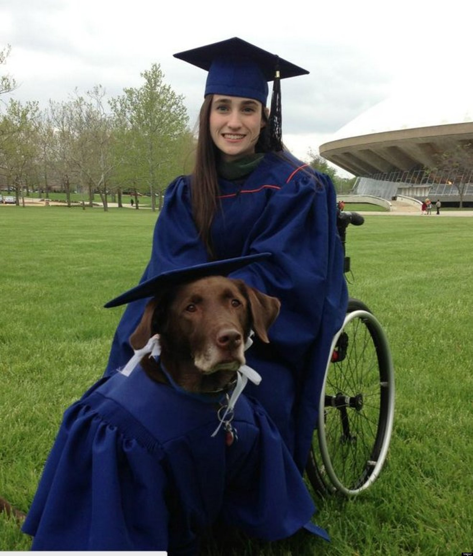 Service Dog Arrives At College Graduation In Cap And Gown, Becomes A ...