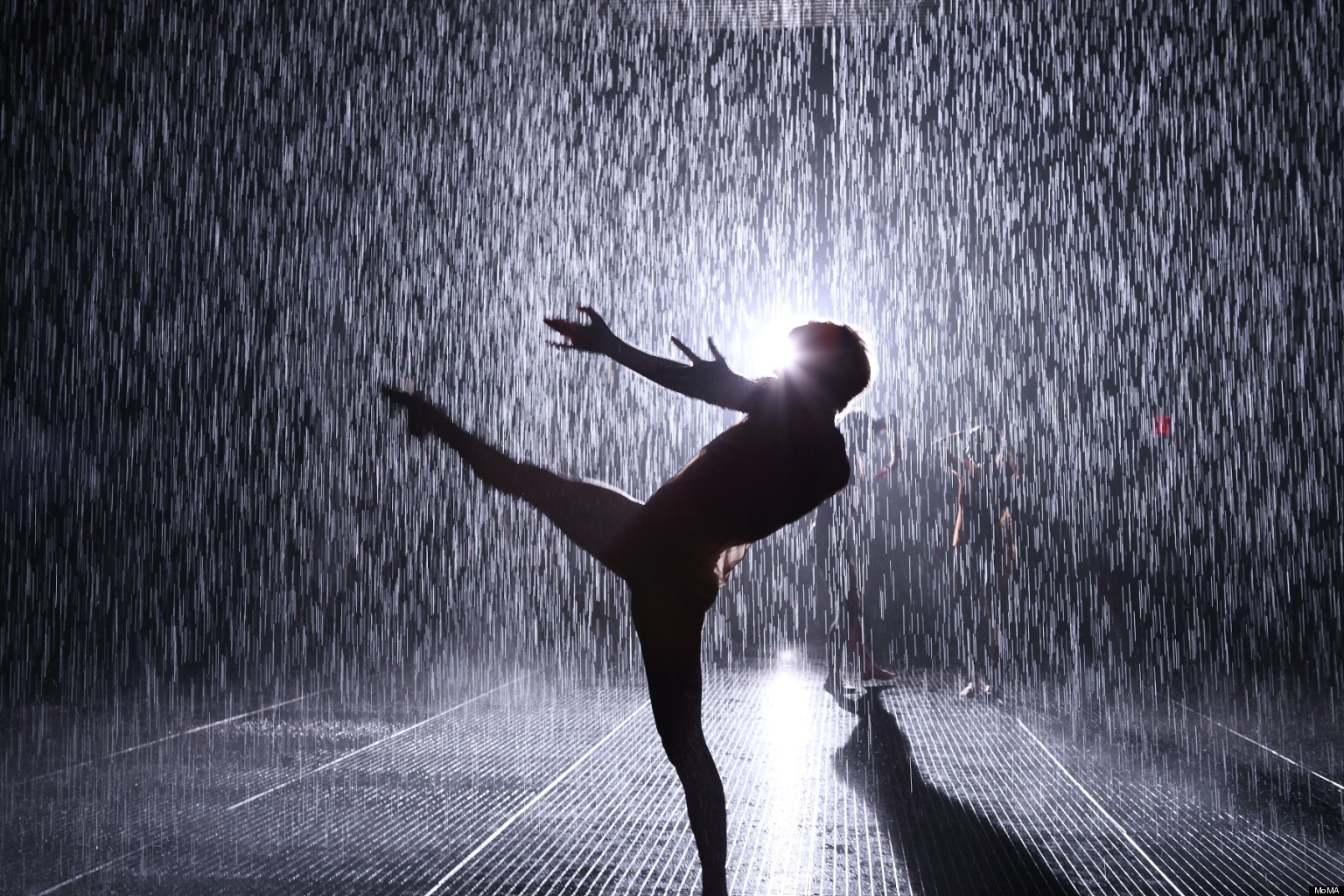 MoMA Rain Room: Creator\'s Project Explores Random International ...