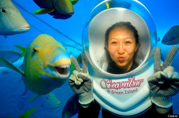 gavin photobombing fish