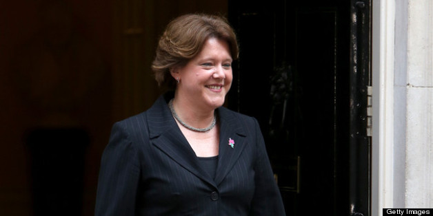 Culture secretary Maria Miller has seen her gay marriage bill pass the Commons
