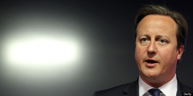 David Cameron is to set out the pro-EU argument