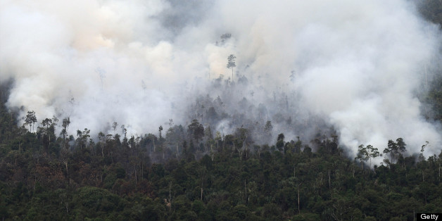 Indonesia Fires, Singapore Smog Likely Caused By Palm Oil Companies