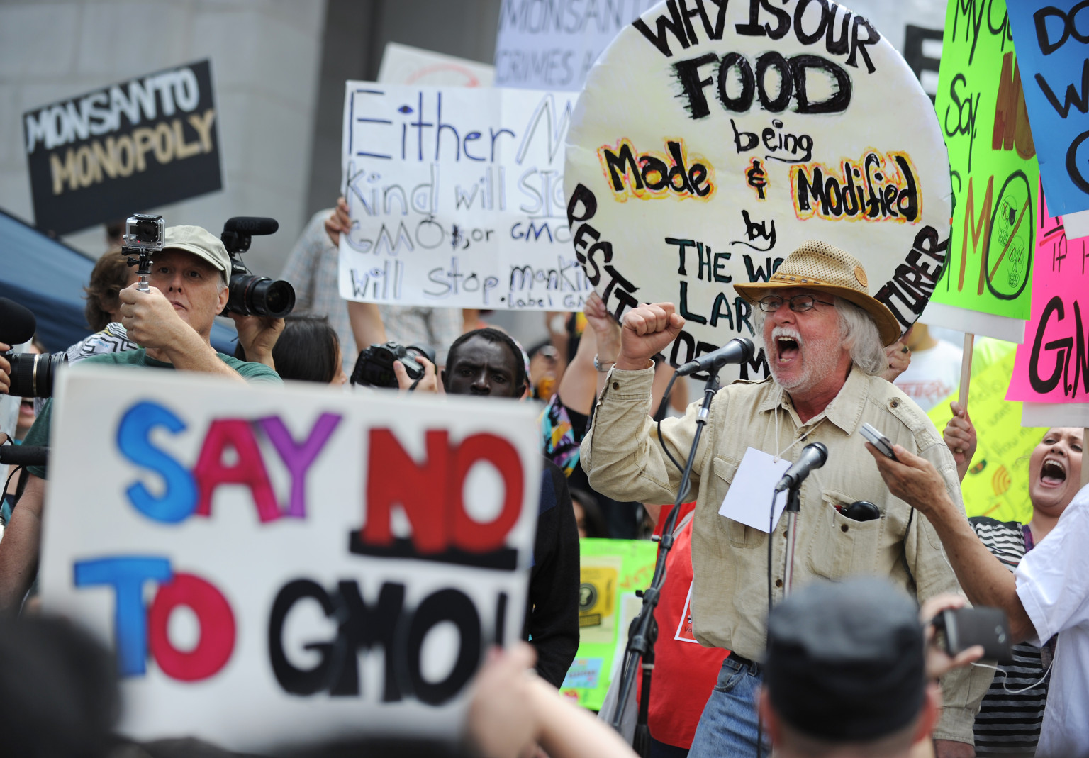 gm foods and world hunger